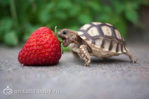Хорошие картинки на ночь глядя)